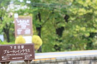 06_秋の雨.jpg
